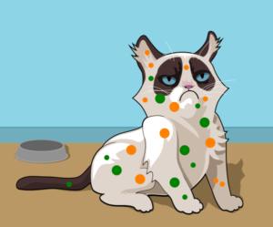 puntíkovaná kočka