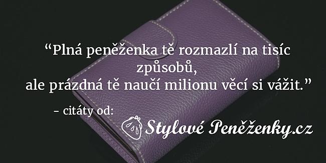 citát - Plná peněženka tě rozmazlí na tisíc způsobů, ale prázdná tě naučí milionu věcí si vážit.